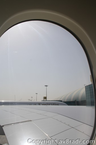 View from my window…My! That is a HUGE wing!